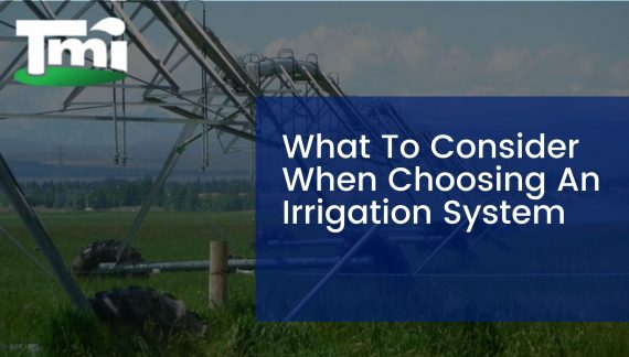 What To Consider When Choosing An Irrigation System