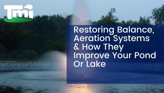 Restoring Balance, Aeration Systems & How They Improve Your Pond Or Lake