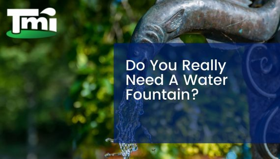 Do You Really Need A Water Fountain?