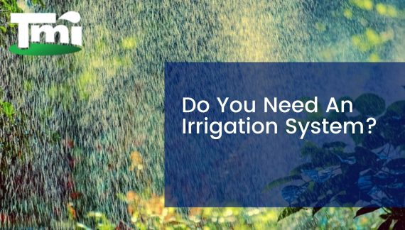 Do You Need An Irrigation System?