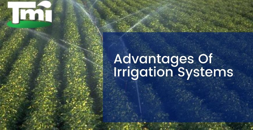 Advantages Of Irrigation Systems