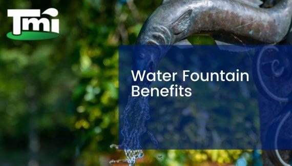 Water Fountain Benefits