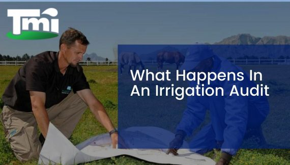 What Happens In An Irrigation Audit